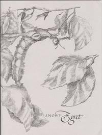 Snowy Egret Autumn 1999