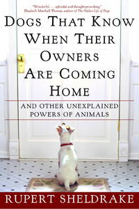 Dogs That Know When Their Owners Are Coming Home: AndDOGS THAT KNOW WHEN THEIR OWNERS ARE COMING HOME : And Other Unexplained Powers of Animals