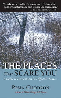 The Places That Scare You: A Guide to Fearlessness in Difficult Times.